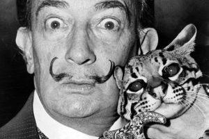 Các Nghệ Sỹ Huyền Thoại Thường Nuôi Mèo ?